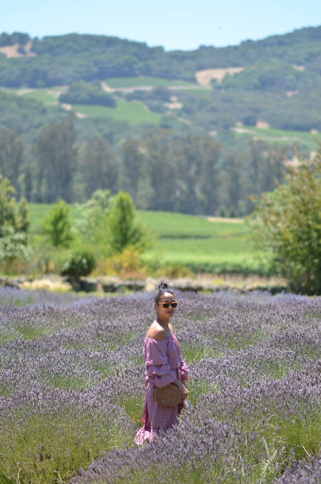 lavender fields in california, lavender fields in wine country, gingham dress, end of summer style