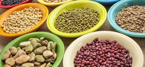 Propiedades nutritivas de las legumbres