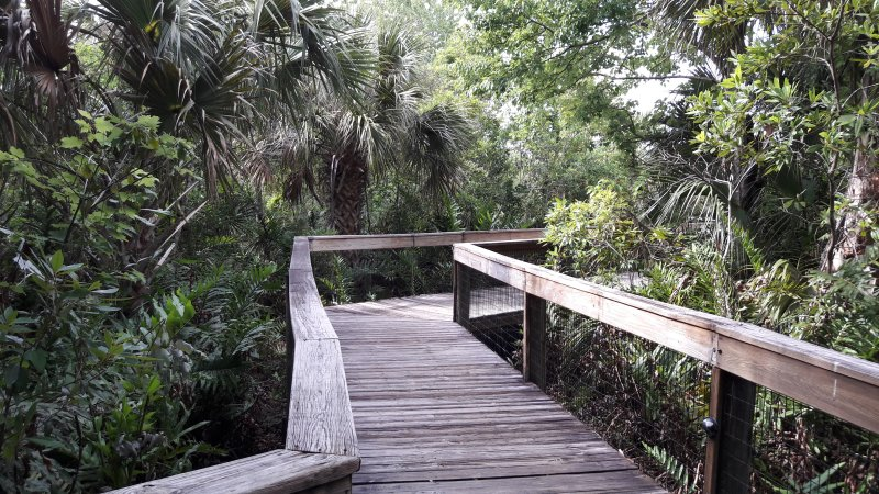 Habitats and Exhibits - Brevard Zoo