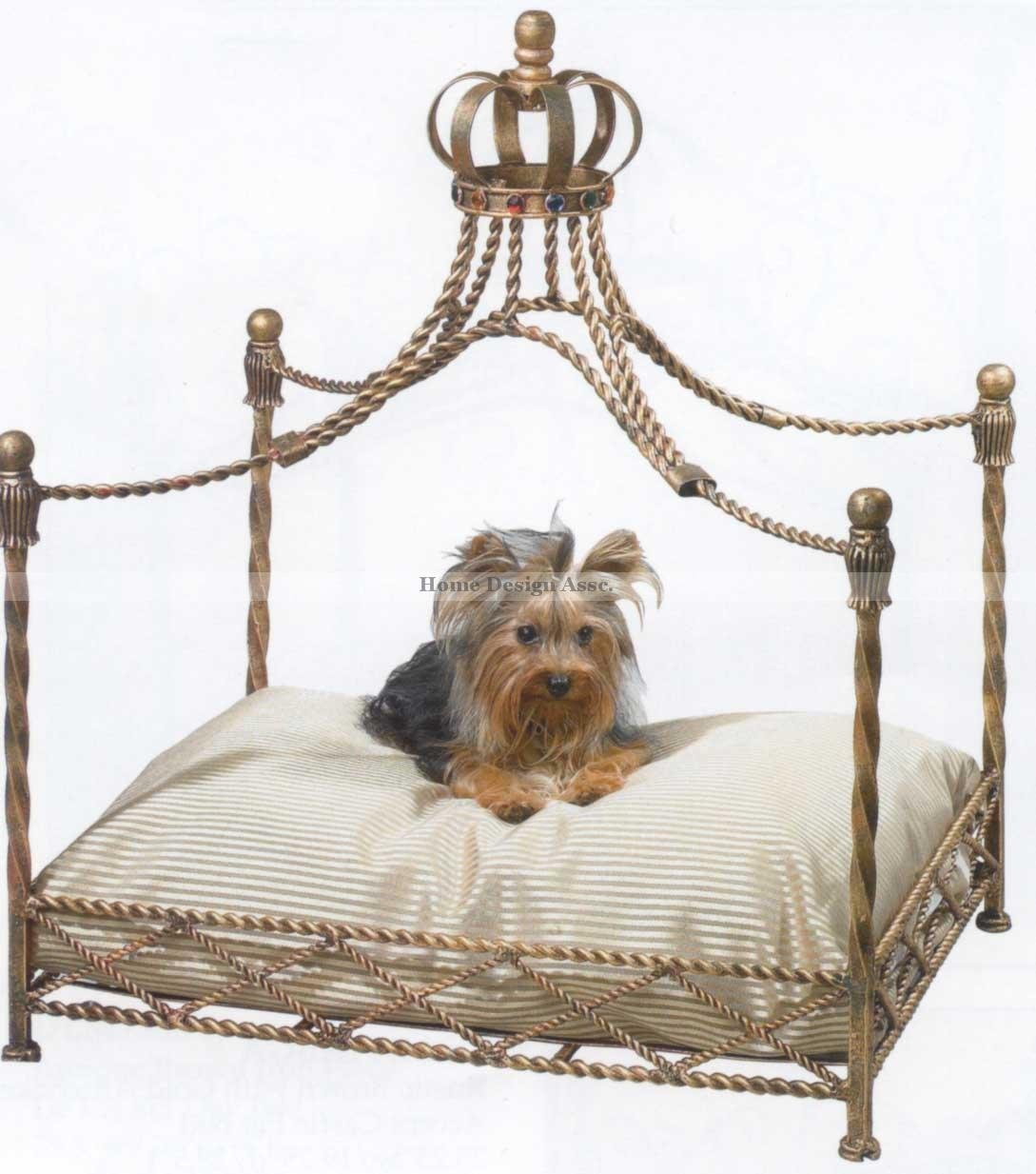 How To Get A Dog Out Of Your Bed