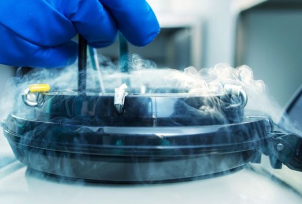'No reason' for Egg Freezing 10-Year Storage Limit