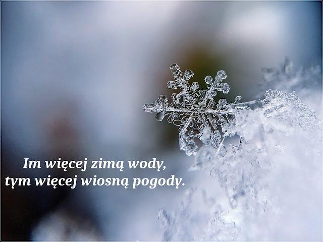 Przysłowie zimowe
