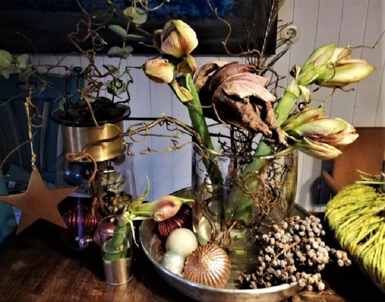 Tischdeko zum Advent