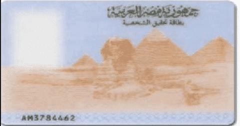 برنامج عمل هوية مصرية 7