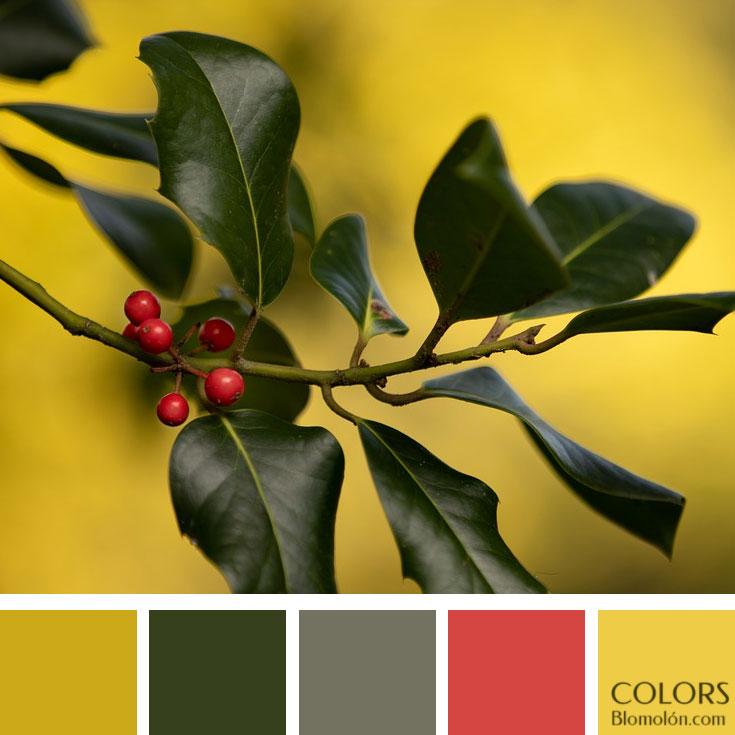 variedad_en_color_paletas_de_colores_102