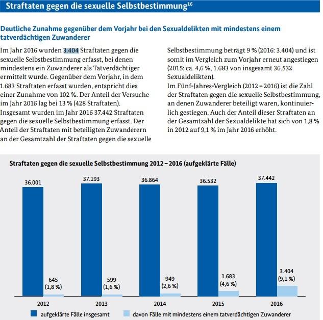 © Capture d'écran du rapport du BKA - Kriminalität im Kontext von Zuwanderung