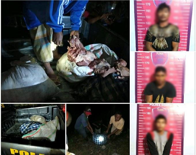 Polisi Ungkap 3 Terduga Otak Pencurian Ternak Di Doroncanga, Dompu