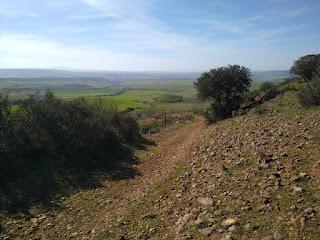Subida a las campiñas altas de La Jara