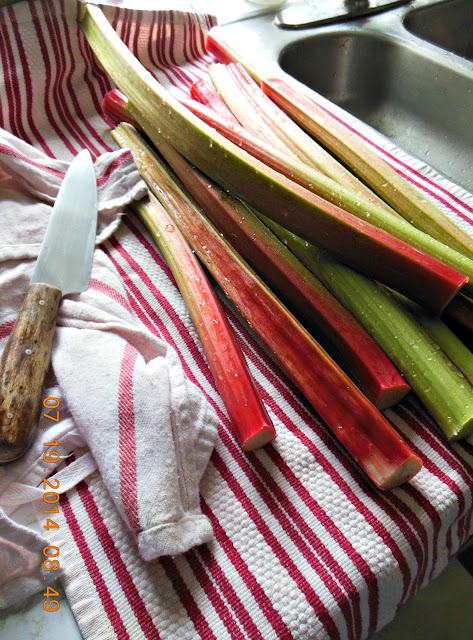 Wordless Wednesday. Recipe for Rhubarb Upside Down Cake.