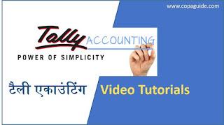 Tally Hindi Video