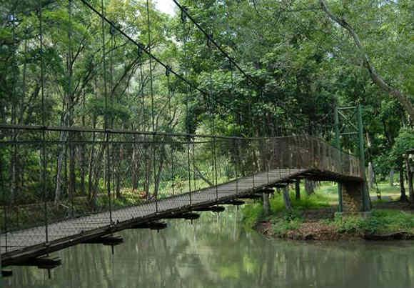 Jembatan di Situ Mustika