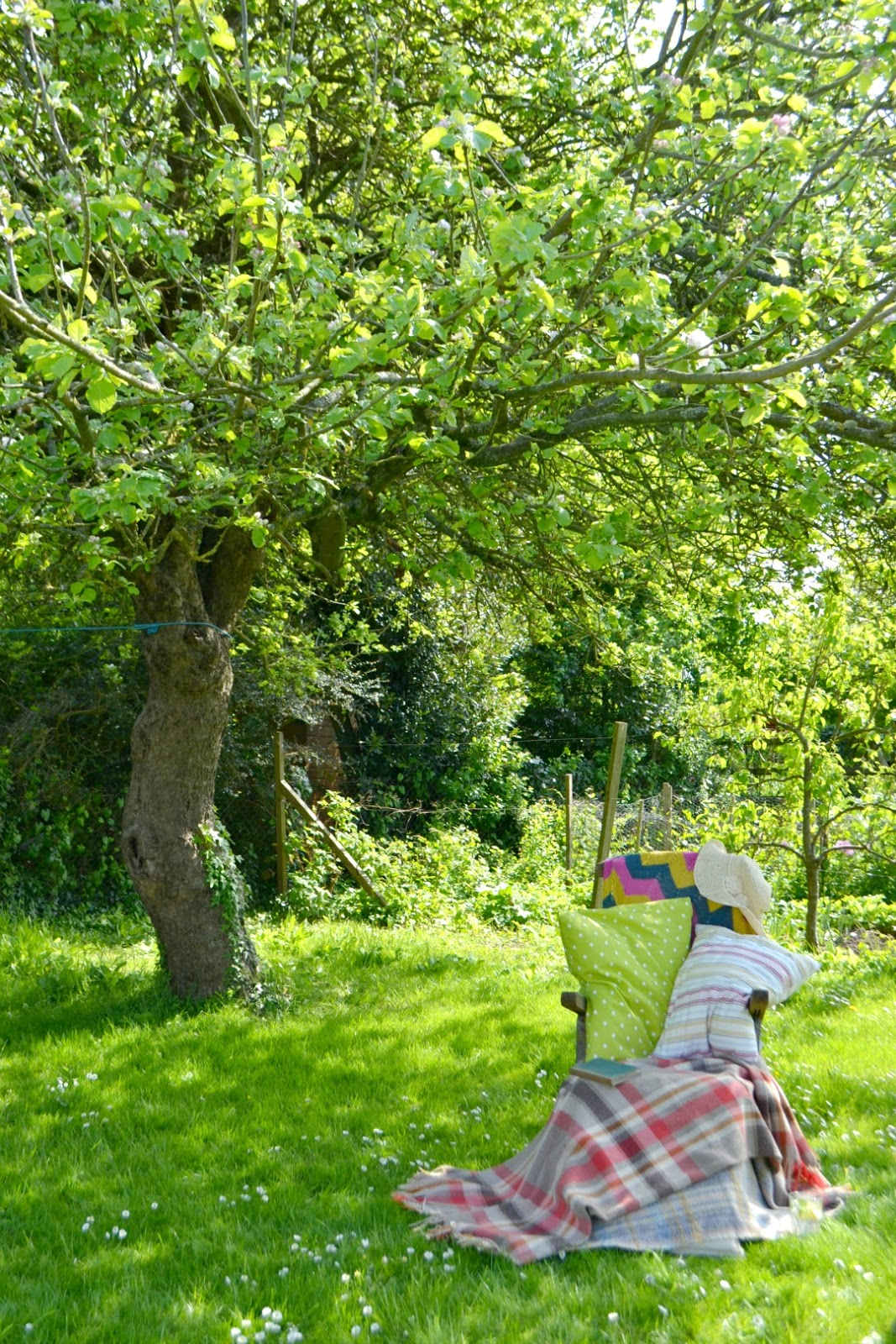 Deck chair under the apple tree