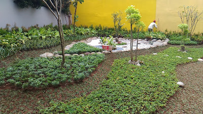 Jasa Tukang Taman Cibitung