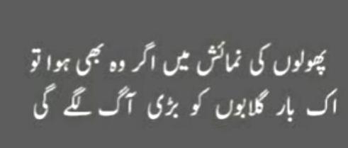 polo ki namahas mein agr urdu quotes