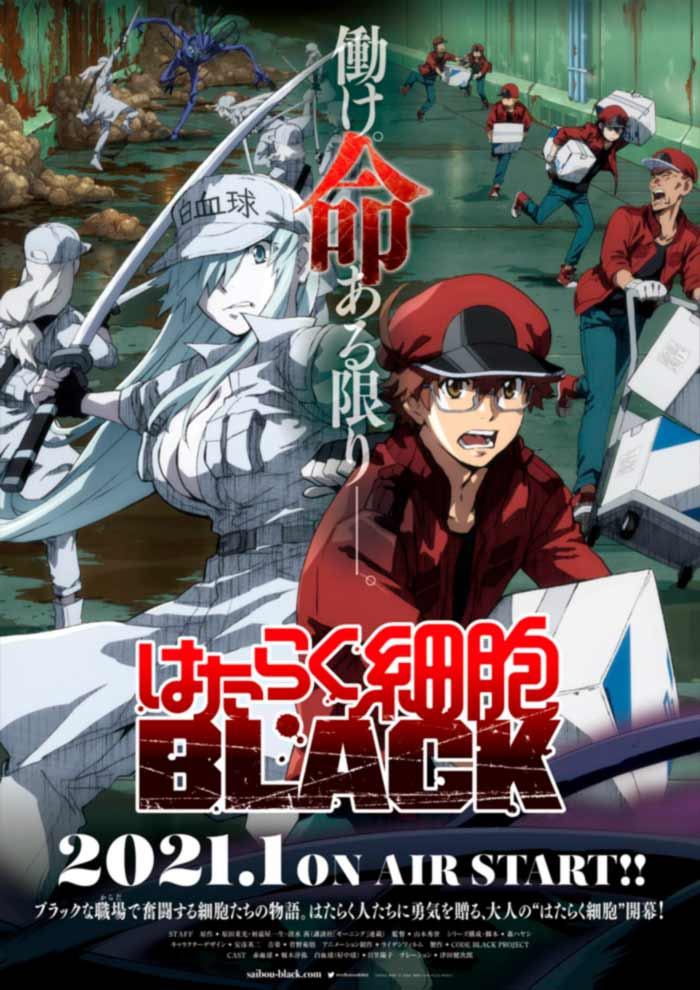 Cells at Work! Code Black (Hataraku Saibou BLACK) anime - poster