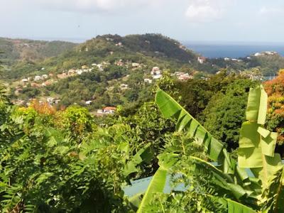 santa lucia caribe