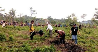 relawan kenduri pohon gunung lemongan 2016