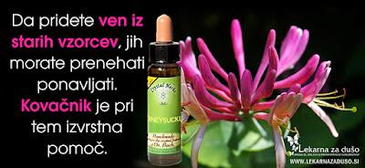 http://bit.ly/Kovačnik