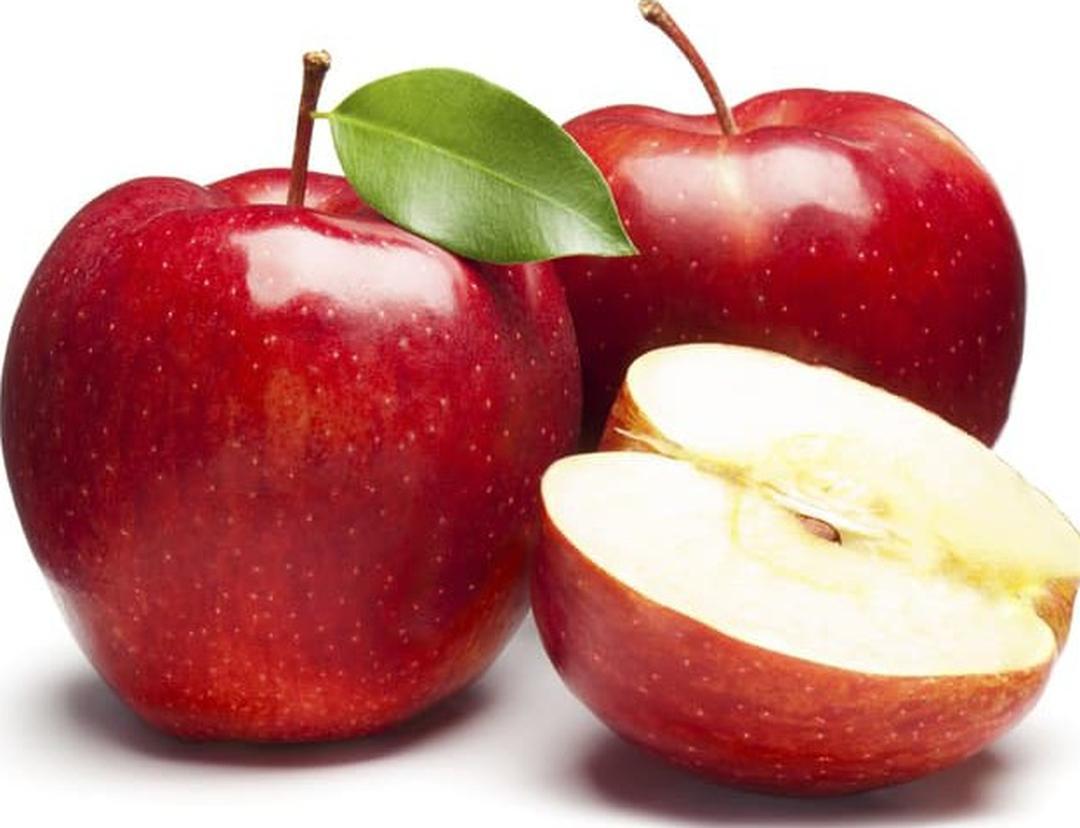 Buruan Borong! benih buah apel merah 4 seed Kota Surabaya #Jual bibit buah