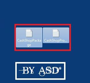 Visualizando los archivos del servidor del cashshop