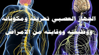 الجهاز العصبي المركزي, الجهاز العصبي الذاتي, الجهاز العصبي الطرفي, الجهاز العصبي pdf, الجهاز العصبي نظير الودي, الجهاز العصبي تعريفه ومكوناته ووظيفته وامراضه ووقايته من الامراض, الجهاز العصبي doc