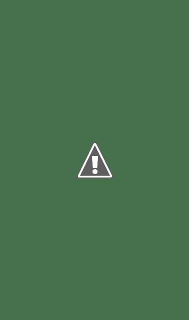 Un exemple de capture d'écran posté par Apple (ci-dessous) montre un écran de rachat d'offre qui donne un mois d'un abonnement gratuit, avant de revenir à son prix habituel de 4,99 $ par mois.