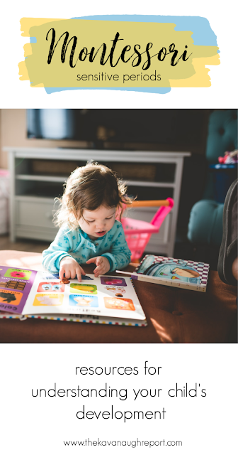 A look at the Montessori sensitive periods plus further reading for understanding how they influence a child's developmental needs