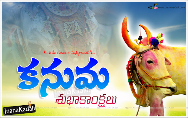 kanuma cow wallpapers, kanuma cow images, kanuma flame wallpapers