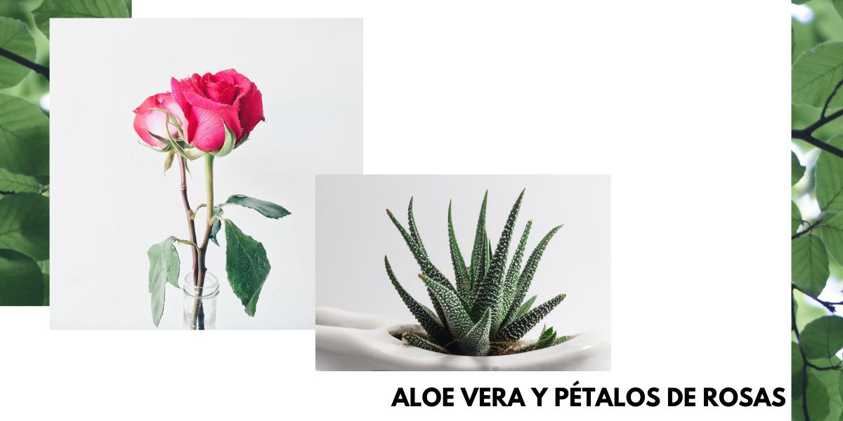 ALOE VERA Y PÉTALOS DE ROSA