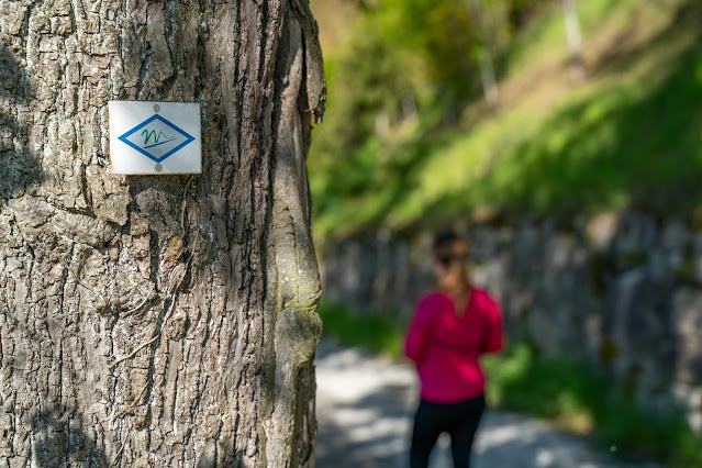 Premiumwanderweg Murgleiter | Etappe 2 von Gernsbach nach Forbach | Wandern nördlicher Schwarzwald 12