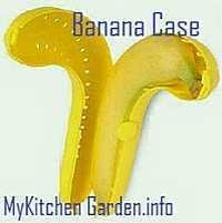 Banana case for keeping banana