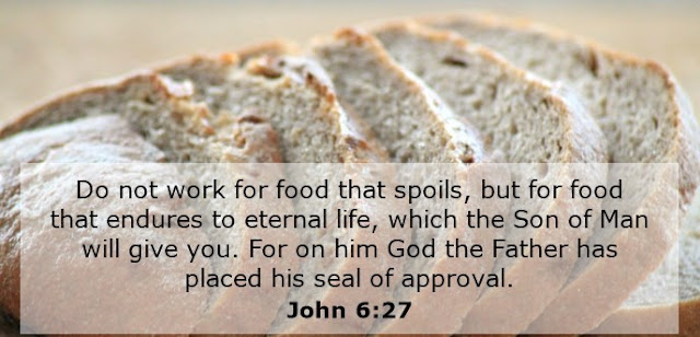 Do not work for food that spoils, but for food that endures to eternal life, which the Son of Man will give you. On him God the Father has placed his seal of approval.