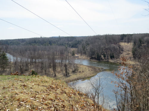 Manistee River from power line cut