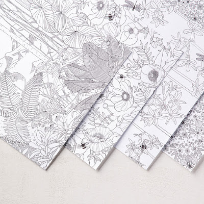 Inside the Lines Paper, Stampin' Up!