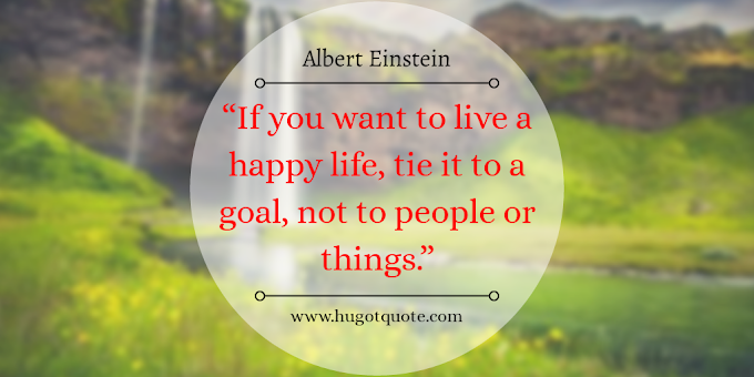 Best Quotes About Life. Tie It To A Goal By Albert Einstein
