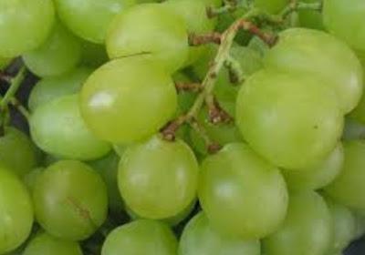 20 Manfaat Buah Anggur Hijau Bagi Kesehatan Tubuh Manusia