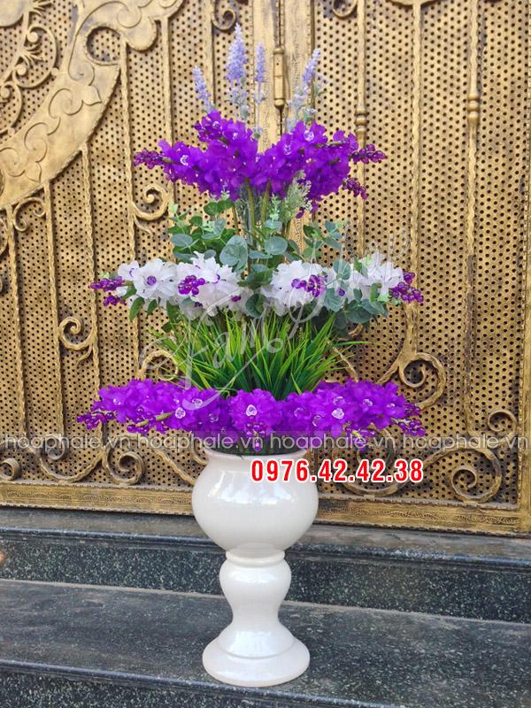Hoa lan pha lê tím trắng - hoa pha le
