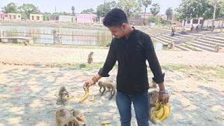 जानवरों की भी सेवा में जुटे हैं शाहगंज के युवा समाजसेवी अक्षत अग्रहरि | #NayaSabera