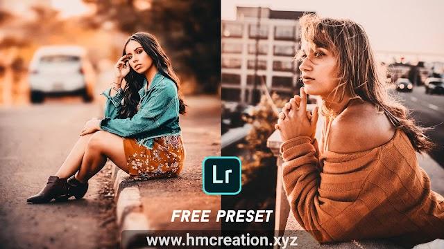 Download free Lightroom Mobile presets - Brown gold tone