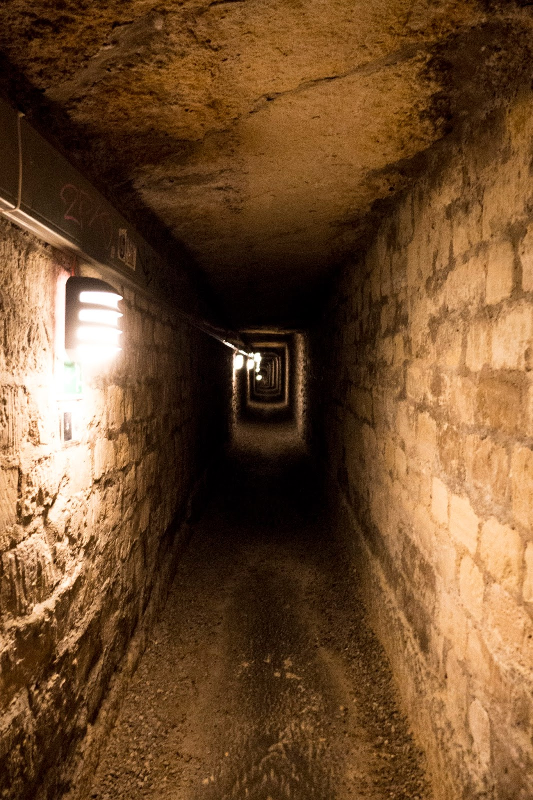 A Backpackers Life The Catacombs of Paris