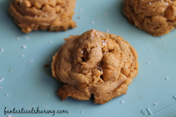 Salted Butterscotch Pudding Cookies // These soft, chewy cookies are chock-full of butterscotch flavor with a hint of salt #recipe #cookies #butterscotch #FBLCookieExchange