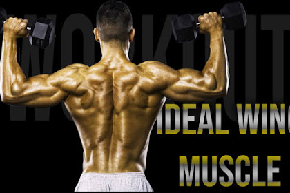 Ideal Wing muscle Shaping Tips