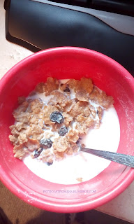 A bowl of raisin brand cereal.