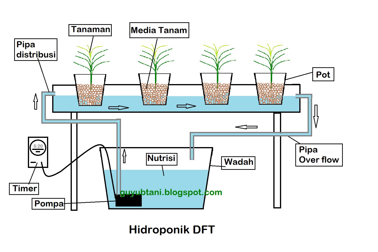 Pengertian Hidroponik Nft Dan Dft