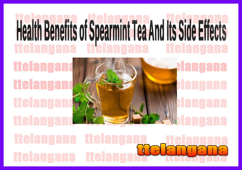Health Benefits of Spearmint Tea And Its Side Effects