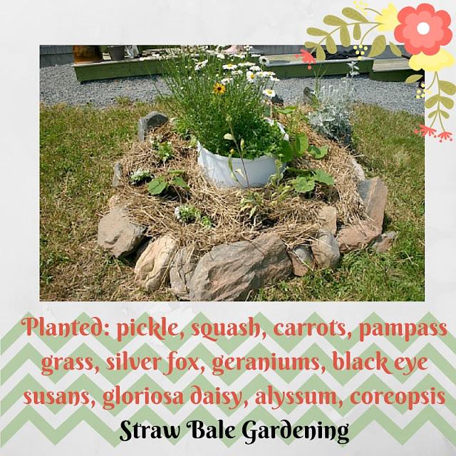How to make a Strawbale Garden.