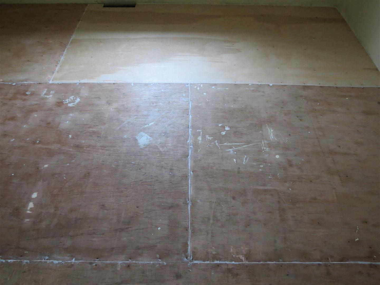 Black Spruce Hound: Painted Plywood Floors