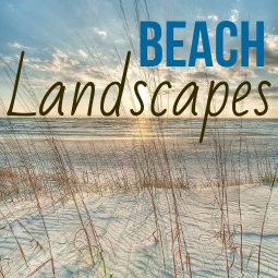 Beach Landscape Art Prints Posters