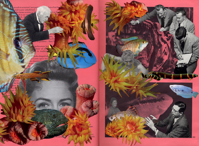 Collage from Go Fish altered book project