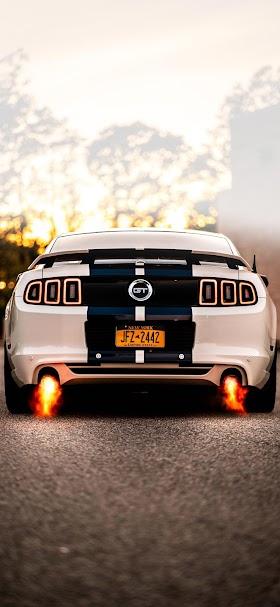 خلفية سيارة موستنج جي تي بيضاء اللون